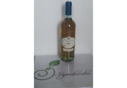 Pinot-Nero-bianco_1.png